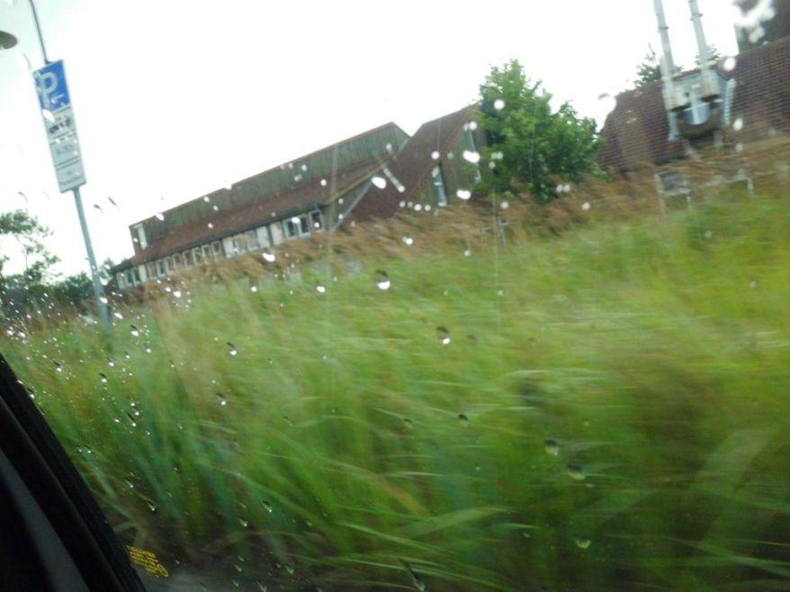 rainscharbeutz