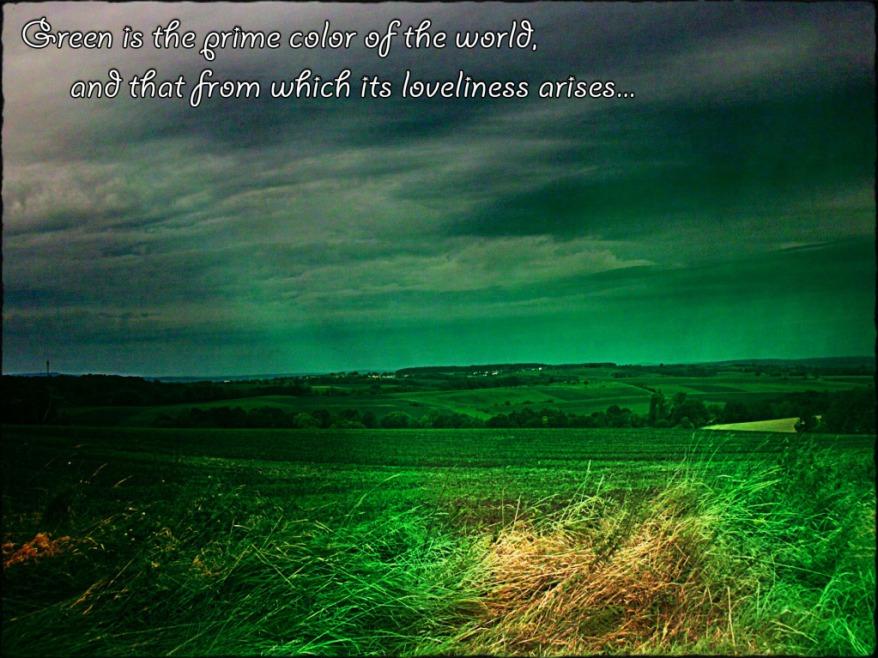 Greenistheprimecoloroftheworldandthatfromwhichitslovelinessarisesthuringiagermannaturephoto