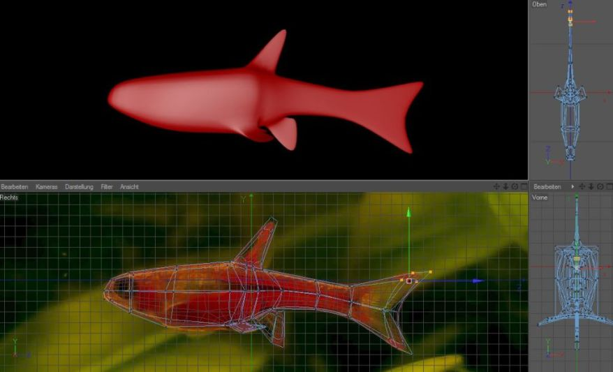 I Try to Model the Fish in 3d Part 1 – Diary of Dennis