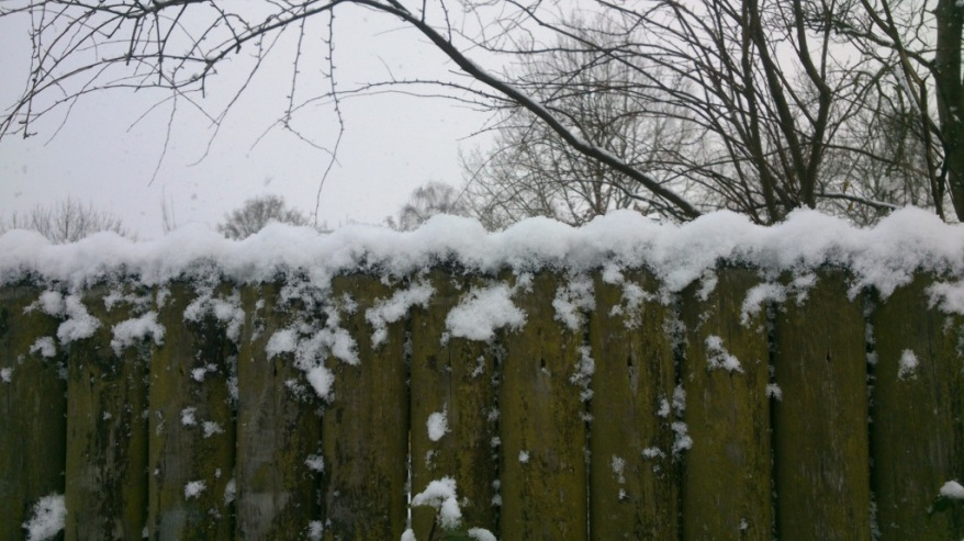 snowonthefence
