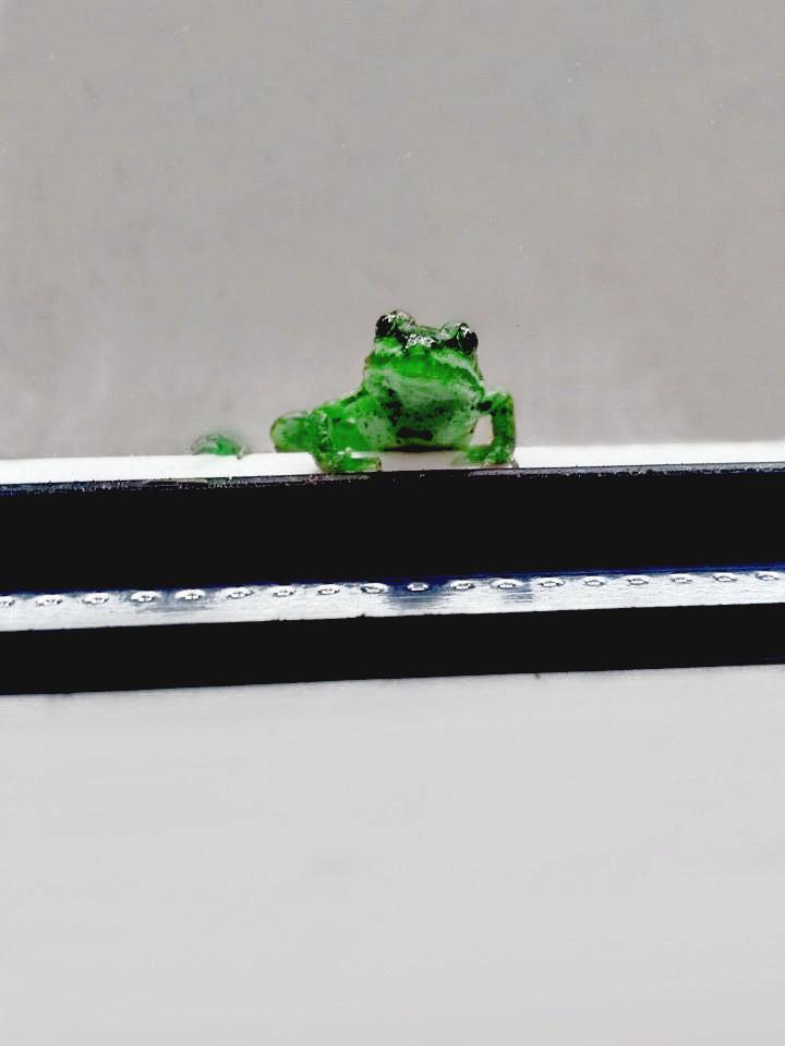 Photoshop Frog
