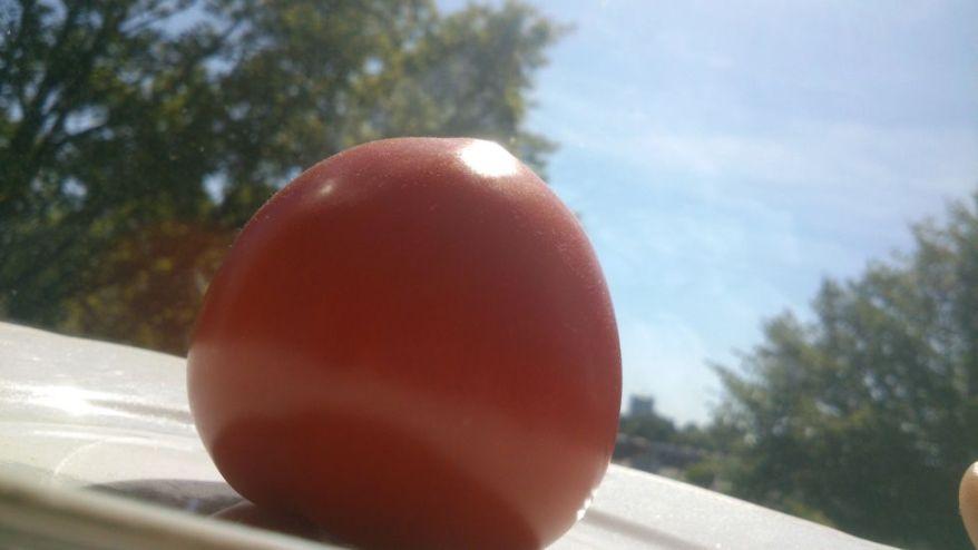 Tomato original image