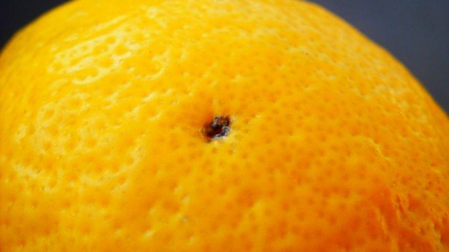 Hole In The Lemon