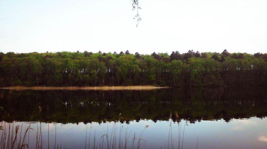 River in Salem