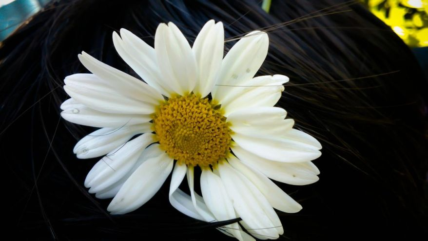 Flower In The Hair