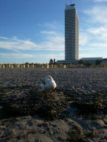 Travemünde Beach 1