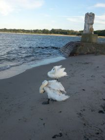 Travemünde Beach 2