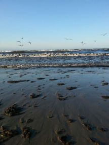 Travemünde Beach 8