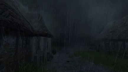 The Witcher 1 Screenshot 08