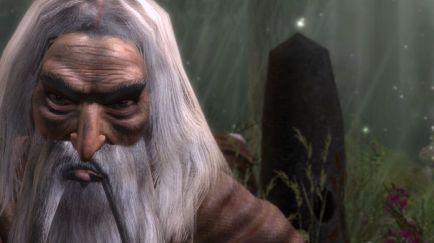 The Witcher 1 Screenshot 22