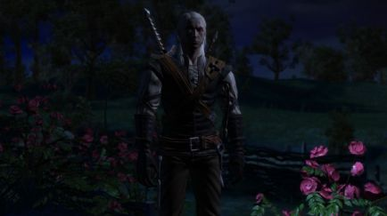 The Witcher 1 Screenshot 32