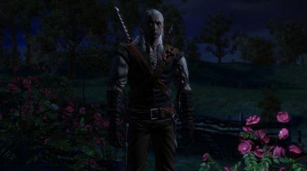 The Witcher 1 Screenshot 32