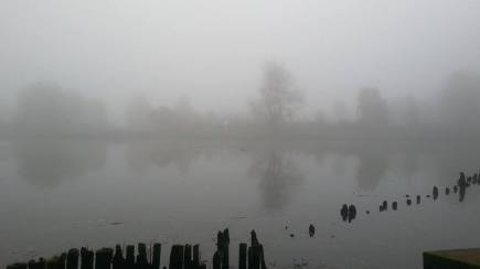 Fog And Trave River