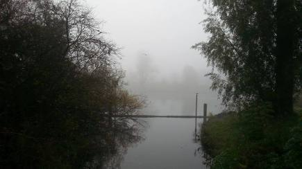 Foggy Morning Near The Trave