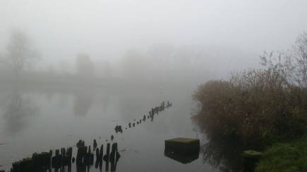 Trave River Fog