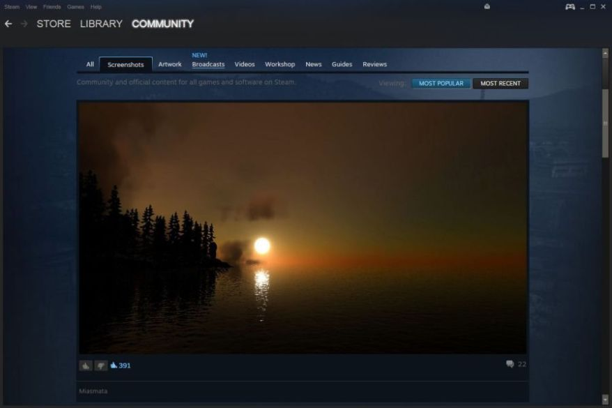 Steam screenshot
