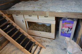 hen house photo 2