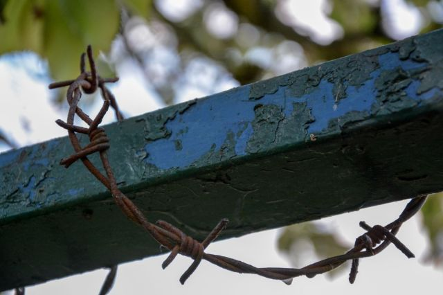 Barbed Wire And Metal