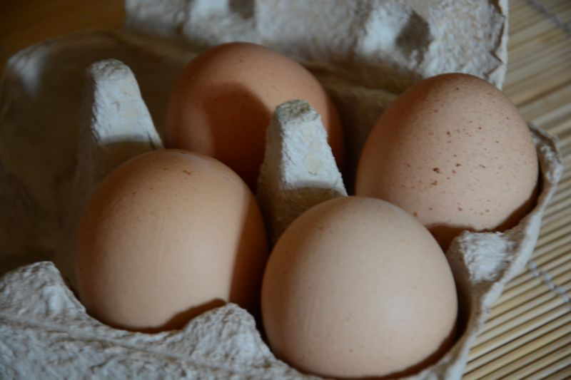 The eggs of our chickens