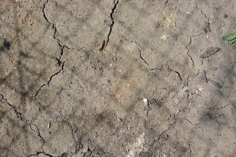Dry Ground Texture