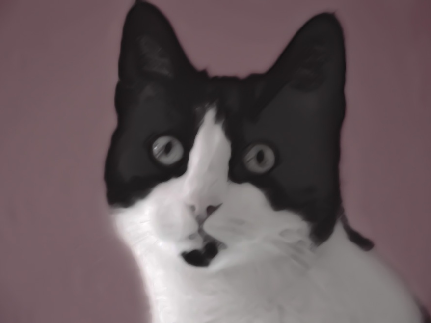 Photoshop Kitty Painting