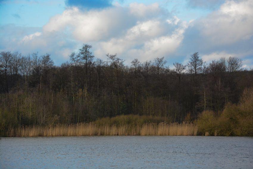 Northern German Landscape Photo