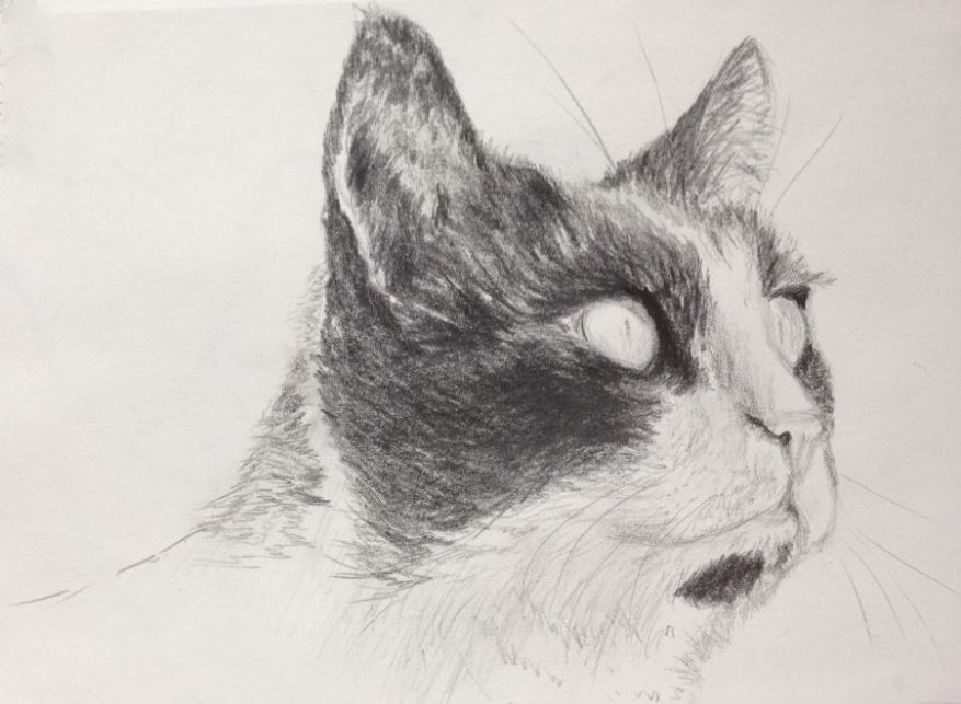 Preliminary sketch of Shyna, drawn with graphite