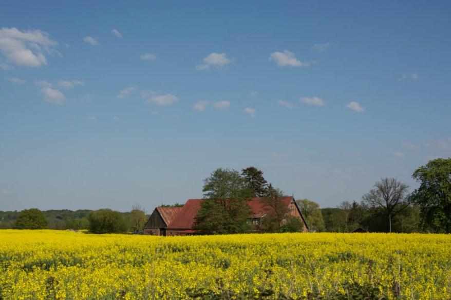 Reinfeld Landscape