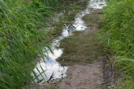 Flood - Schellbruch 2