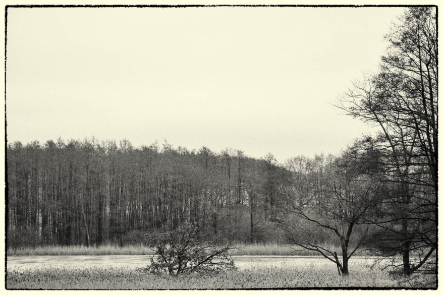 Reinfeld Landscape Retro Photo