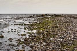 Baltic Sea Rocky Beach