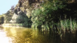 River Picture Edited