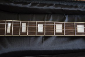 Guild Bluesbird Newark St. Collection Neck
