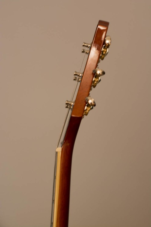 Guild Bluesbird Neck from the side