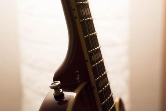 Bluesbird Rounded Fretboard