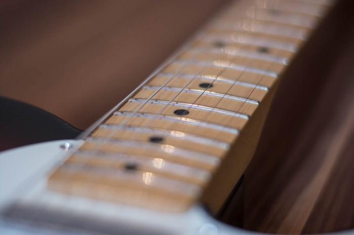 Fender Standard Telecaster Neck