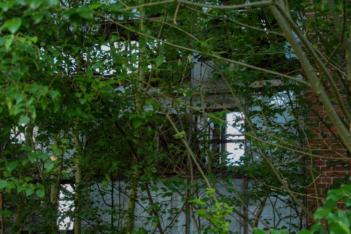 Lost Place - Abandoned Structure