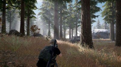 PUBG Forest Screenshot