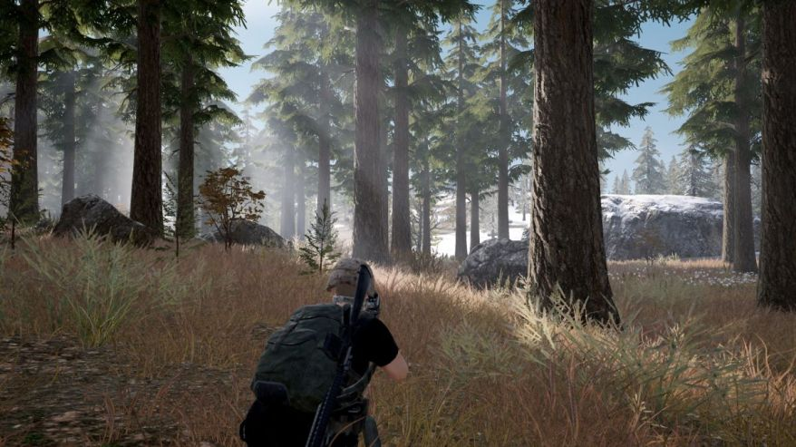 PUBG Forest Screenshot