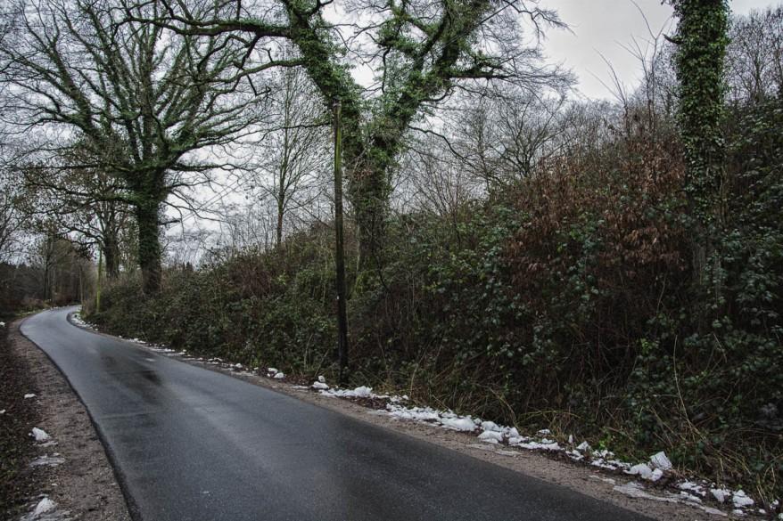 winter path