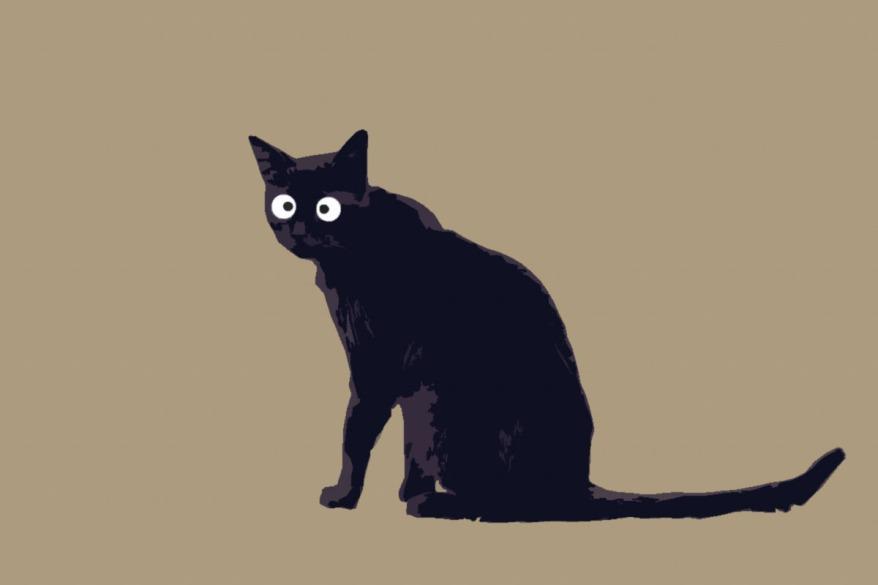 cutout cat