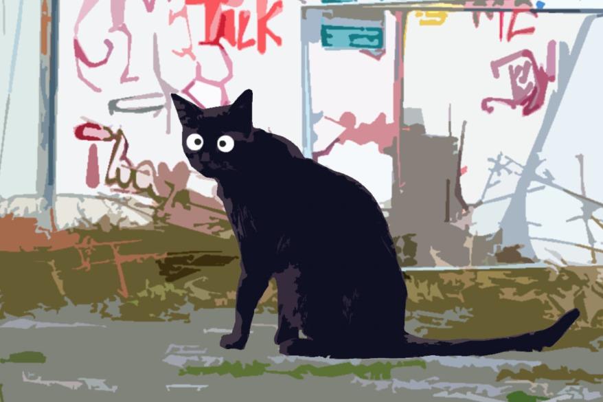 Kiez Katze
